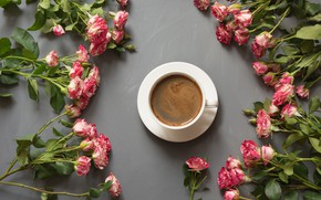 Картинка чай, розы, букет, чашка