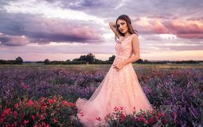 Картинка лето, небо, девушка, цветы, поза, вечер, платье, красивая, Sergey Shatskov