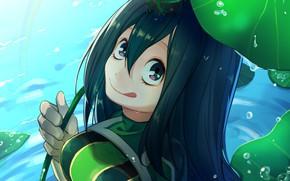 Картинка девушка, лягушки, Boku no Hero Academia, Моя геройская академия, Asui Tsuyu