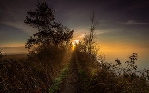 Картинка закат, природа, туман