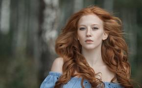 Картинка взгляд, девушка, веснушки, рыженькая