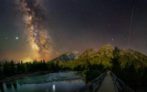 Картинка лес, звезды, горы, ночь, мост, озеро, скалы, берег, ели, Млечный путь, водоем, звездное небо