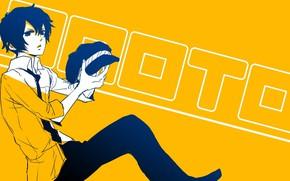 Картинка парень, жёлтый фон, Persona, Персона