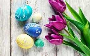 Картинка цветы, яйца, colorful, Пасха, тюльпаны, happy, flowers, tulips, purple, eggs, easter, decoration