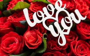 Картинка Love, розы, букет, красные, День Святого Валентина