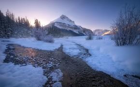 Картинка Winter, landscape, Canadian Rockies, Banff national parks