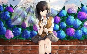 Картинка цветы, зонт, девочка, гортензия