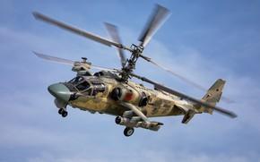 Обои Ка-52, «Аллигатор», ВКС России