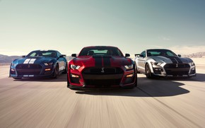 Картинка Mustang, Ford, Shelby, GT500, 2019