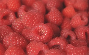 Картинка макро, ягоды, малина