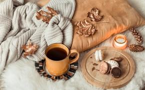 Картинка осень, листья, шерсть, autumn, leaves, свитер, coffee cup, macaroons, чашка кофе, макаруны