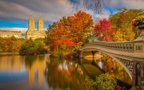 Обои осень, мост, река, Нью-Йорк, красиво, New York