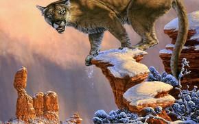 Картинка зима, небо, взгляд, морда, свет, снег, ветки, природа, поза, камни, обрыв, скалы, пустыня, рисунок, картина, …