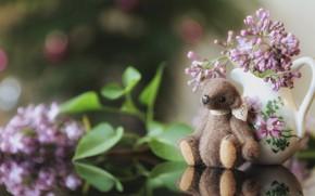 Картинка листья, цветы, детство, отражение, стол, фон, игрушка, букет, весна, медведь, мишка, медвежонок, кувшин, натюрморт, сидит, …