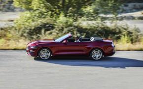 Картинка движение, растительность, Ford, кабриолет, 2018, тёмно-красный, Mustang Convertible