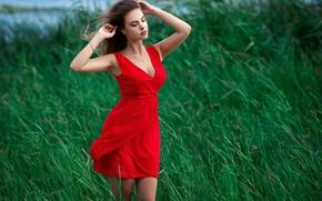 Картинка грудь, трава, вода, поза, Девушка, фигура, платье, Sergey Gokk