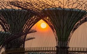 Картинка солнце, закат, Азия, Сингапур