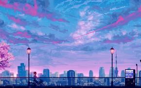 Картинка небо, закат, велосипед, сакура, парень, остановка, by SeerLight