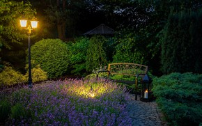 Картинка скамейка, парк, фонарь