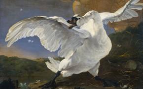 Картинка птица, масло, картина, холст, Ян Асселин, Лебедь в Опасности, Jan Asselijn, 1652