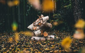 Картинка осень, листья, ветки, природа, темный фон, дерево, листва, забор, двор, бревна, дрова, листопад, боке, поленья