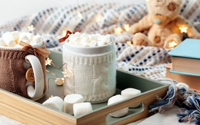 Картинка книги, шарф, сладости, декор, горячий шоколад, зефир