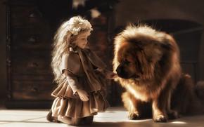 Картинка собака, девочка, друзья, пёс, тибетский мастиф, Валерия Мытник, большой друг