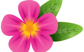 Картинка цветок, фон, листик, розовый цветок