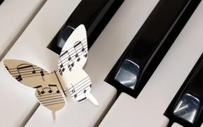 Картинка ноты, музыка, бабочка, пианино