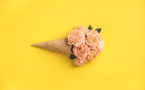 Картинка желтый, фон, розы, бутоны, рожок, вафельный
