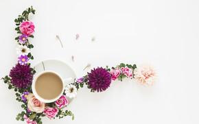 Картинка цветы, роза, кофе, композиция