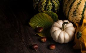 Картинка листья, темный фон, доски, урожай, тыквы, тыква, натюрморт, каштаны