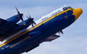Картинка полёт, самолёт, Lockheed, военно-транспортный, Hercules, Blue Angels, C-130, КМП США, US Marines