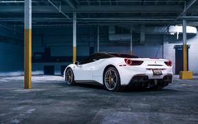 Картинка белый, спорткар, вид сзади, Ferrari 488
