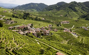 Картинка Природа, Дома, Горы, Италия, Виноград, Пейзаж