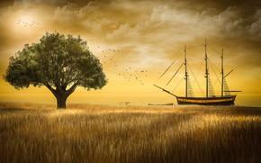 Картинка пшеница, поле, небо, облака, свет, пейзаж, закат, птицы, природа, рендеринг, дерево, берег, корабль, стая, вечер, …