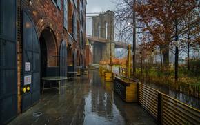 Картинка осень, мост, дождь, дерево, Нью-Йорк, кафе, Бруклинский мост, New York City, Brooklyn Bridge, Brooklyn Bridge …