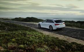 Картинка белый, Audi, растительность, гибрид, универсал, Audi A6, 2020, A6, A6 Avant, 55 TFSI e quattro