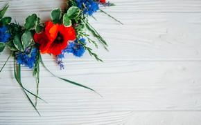 Картинка цветы, маки, colorful, summer, венок, wood, flowers