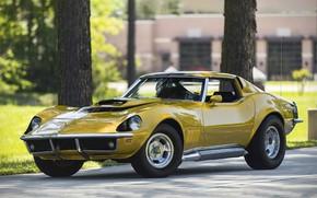 Картинка Corvette, 1969, 454, Motion, Baldwin, Phase III