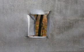 Картинка природа, окно, карантин, изоляция