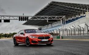 Картинка купе, BMW, Coupe, 2018, 8-Series, тёмно-оранжевый, M850i xDrive, 8er, G15, стартовая прямая