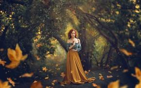 Картинка листья, девушка, природа, поза, парк, рыжая, Jessica Drossin