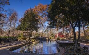 Картинка осень, небо, деревья, пруд, парк, сад, USA, США, park, autumn
