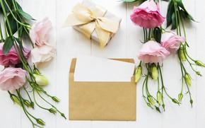 Картинка цветы, праздник, подарок, конверт, поздравление, эустома, Olena Rudo
