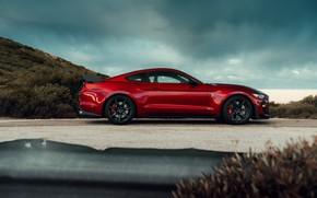 Картинка Mustang, Ford, Shelby, GT500, профиль, кровавый, 2019