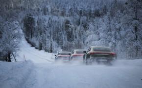 Картинка дорога, лес, снег, движение, Porsche, 2020, Taycan, Taycan 4S