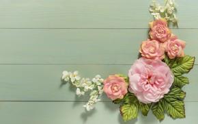 Картинка листья, цветы, фон, бутоны, wood