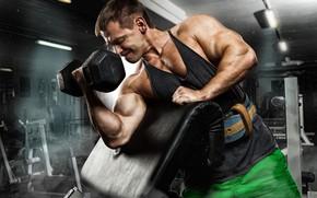 Картинка поза, muscle, мышцы, тренировка, бицепс, gym, training, weight, Gym, dumbbells, biceps, bodybuilder, спорт зал
