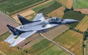 Картинка многоцелевой истребитель, МиГ-29А, ВВС Польши